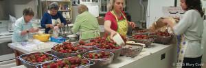 Strawberry Fest 2015 Kitchen Crew